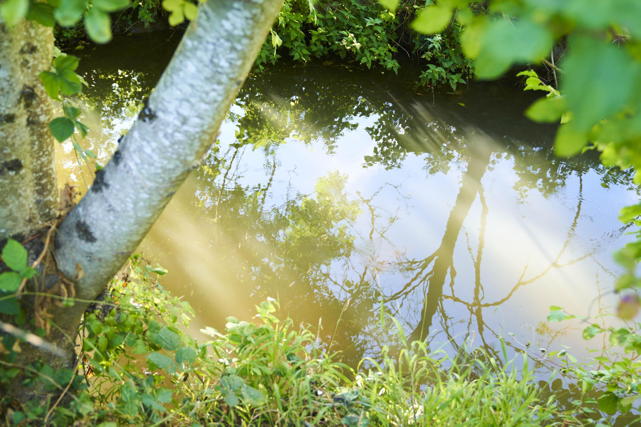L'étangsort traverse le village de Saint Georges de la Couée dans une vallée classée