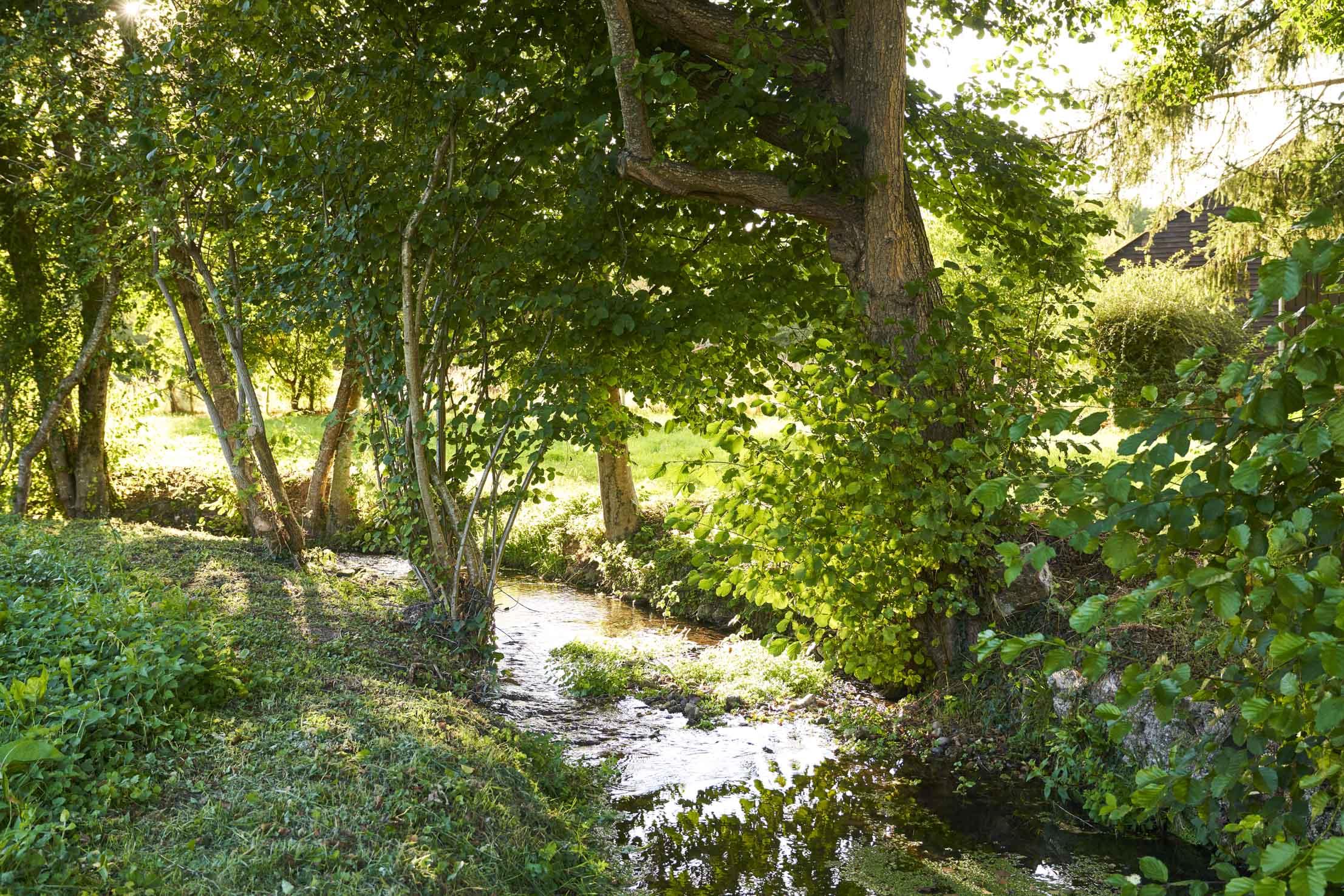 La savonnière rivière à Saint Fraimbault - Tourisme vert Sarthe